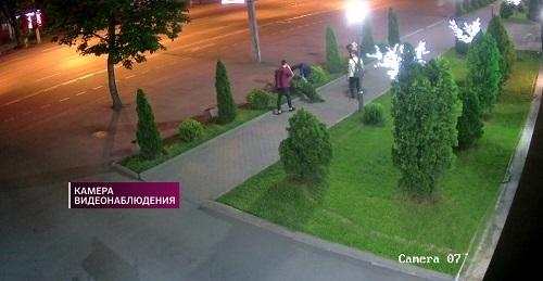 Вандализм: в Алматы хулиганы ломали деревья
