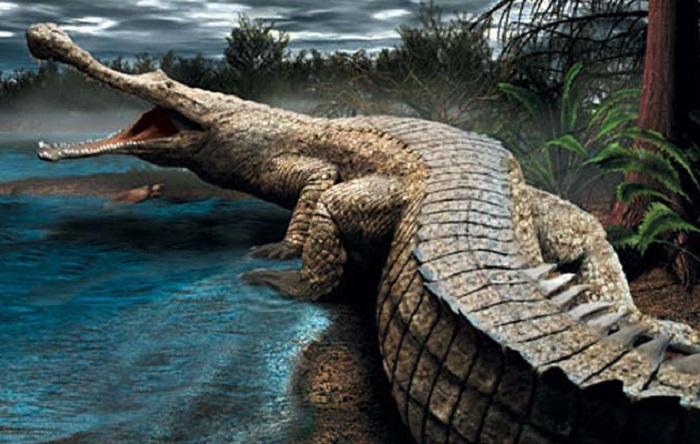 В Костанайской области учёные обнаружили останки древнего крокодила