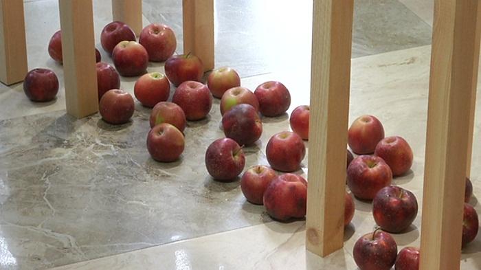 В Алматы открылся музей, посвященный яблоку