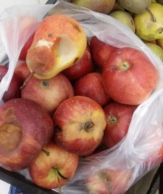Учащихся школы-лицея в Астане кормили просроченными продуктами