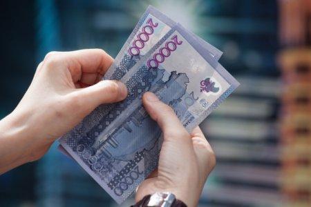 Налоговую амнистию для предпринимателей объявили в Казахстане