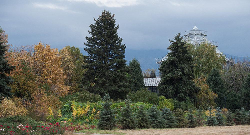 Прокуратура снизила плату за вход в Ботанический сад Алматы