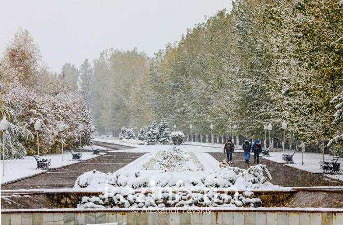 Высота выпавшего в Алматы снега составила 2-3 сантиметра