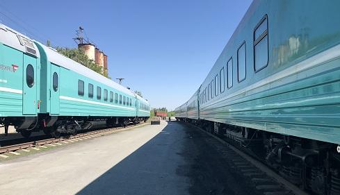Двое детей пострадали из-за упавшей в поезде полки