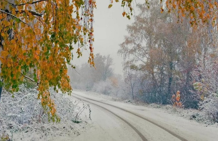 Погода в Алматы с 12 по 18 ноября 2018