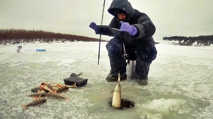 Любители незаконной рыбалки попались в Акмолинской области