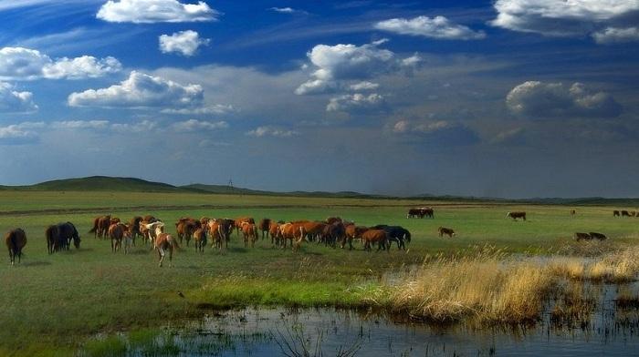 7 граней Великой степи: о чем написал статью Нурсултан Назарбаев