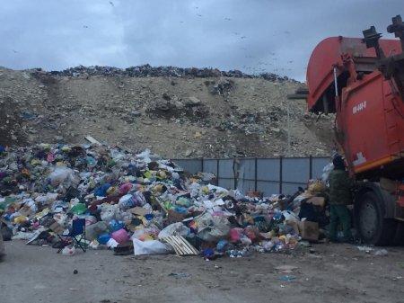 Тело новорожденного обнаружили на мусорной свалке в Мангистау