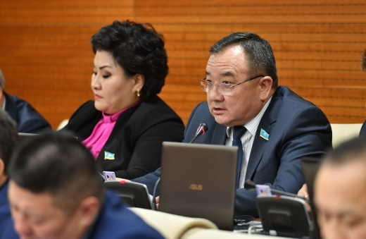 Депутат возмущен штрафами казахстанцев за чужое имущество