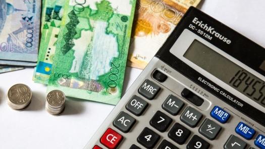 Налоговую амнистию для казахстанских предпринимателей начнут в январе 2019 года