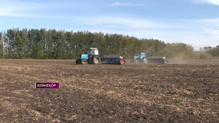 Бесплатным дизельным топливом и элитными саженцами обеспечит Минсельхоз фермеров