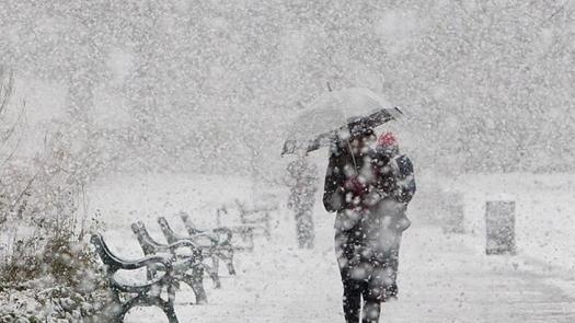 Школьные занятия отменили в Павлодаре