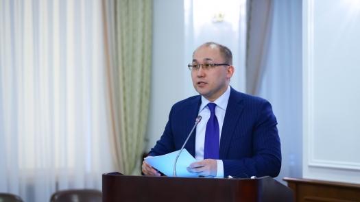 Один цифровой и пять миграционных ЦОНов откроют в Казахстане в 2019 году