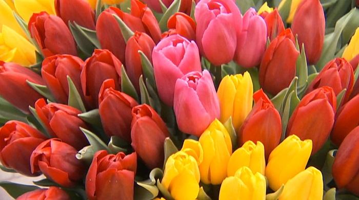 Цветочный бум: какова средняя стоимость букета в Алматы