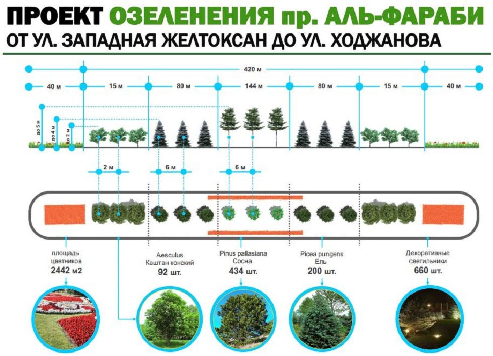 Более 700 деревьев посадят по проспекту Аль-Фараби в Алматы