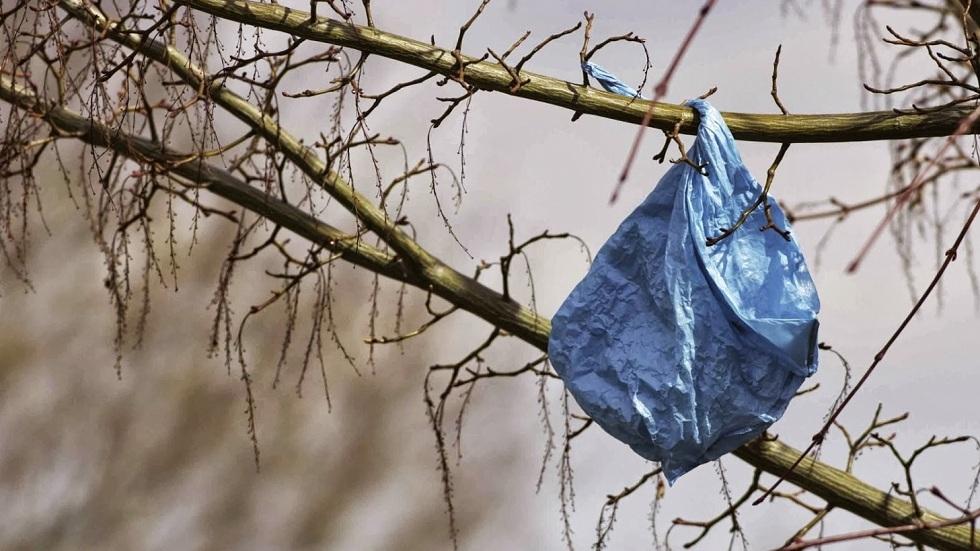 Запрет на полиэтиленовые пакеты в Казахстане: что предлагает Минэнерго
