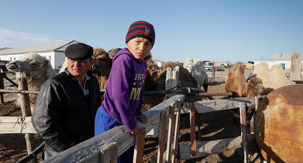 Количество сельских жителей сократилось в Казахстане