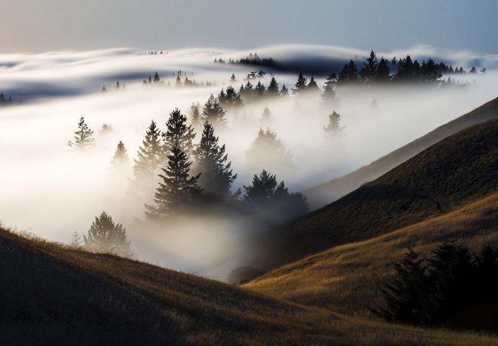 Туман, град и пыльные бури: прогноз погоды в Казахстане на 3 мая