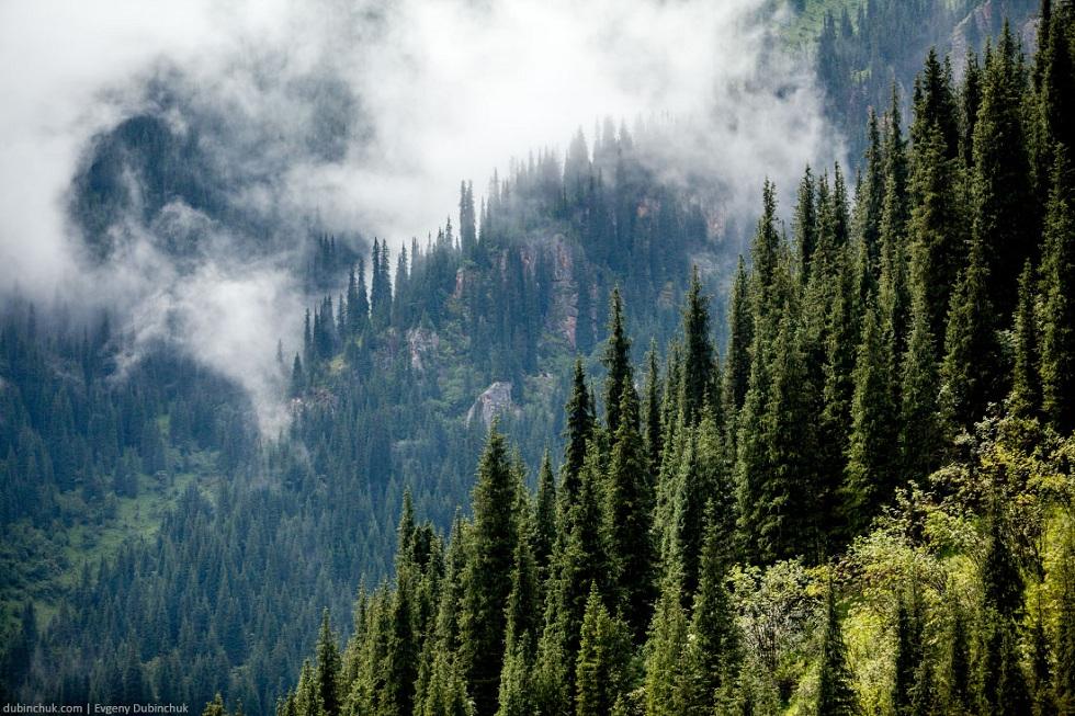 Пострадали из-за непогоды: трех девушек спасли в горах Алматы
