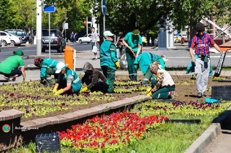 Более 8 млн цветов высадят в столице Казахстана