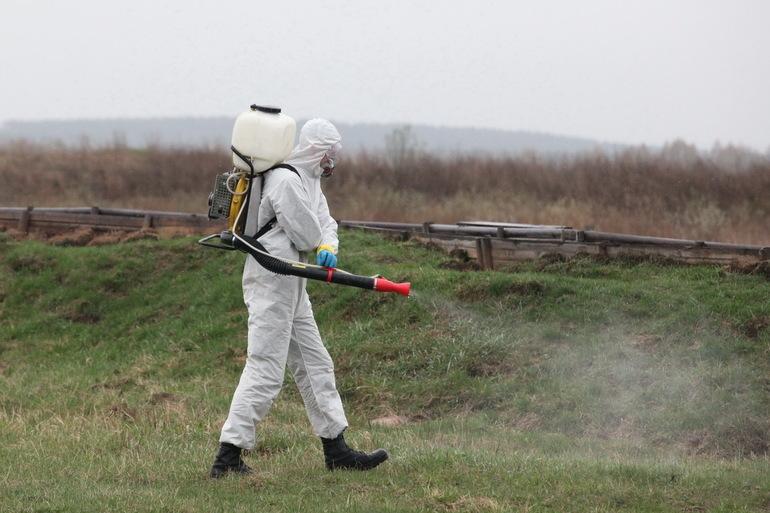 В столице Казахстана готовятся к нашествию комаров