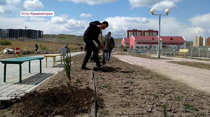 На субботник в Усть-Каменогорске вышли сторонники Амиржана Косанова