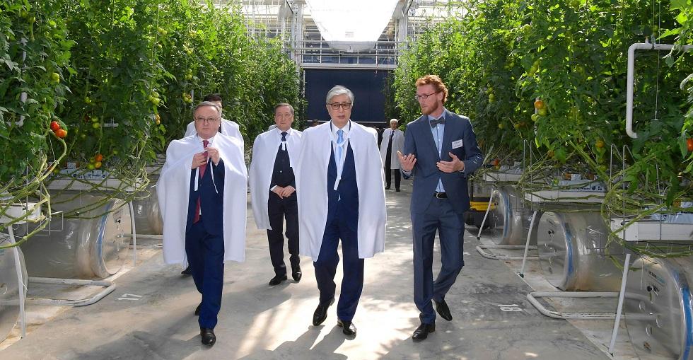 Касым-Жомарт Токаев посетил тепличный комплекс «Green Capital Kazakhstan»