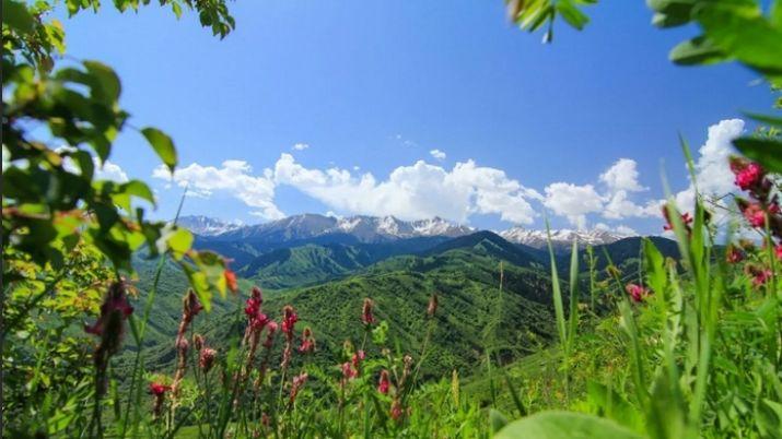 Погода в июне в Казахстане - прогноз синоптиков