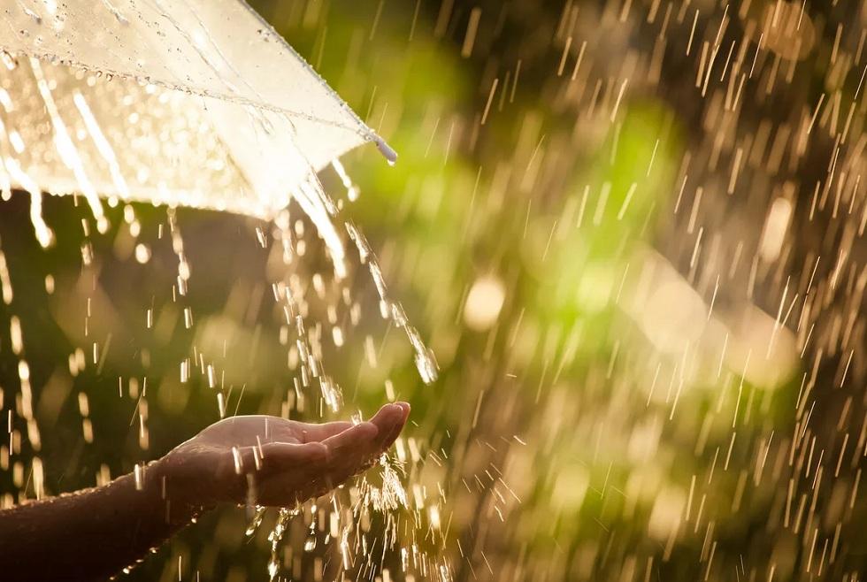 Дожди на севере, пыльные бури на юге: погода в Казахстане на 5 июня