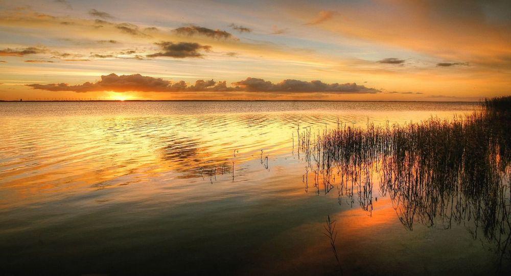 В Атырауской области неожиданно образовалось озеро