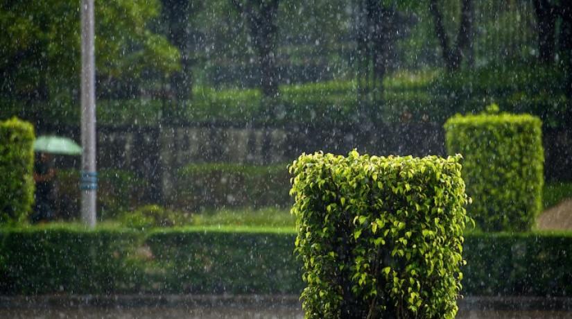 Погода в Алматы с 8 по 13 июня – Казгидромет
