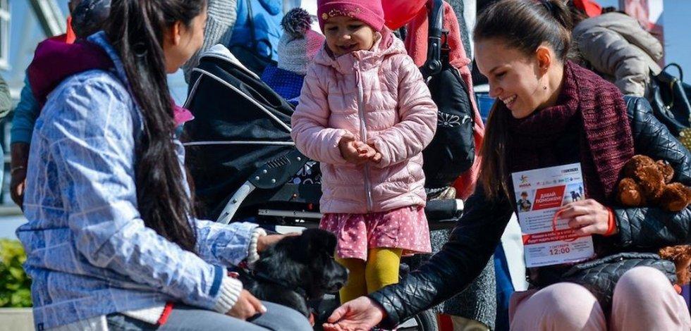 Выставка бездомных животных пройдет в Алматы
