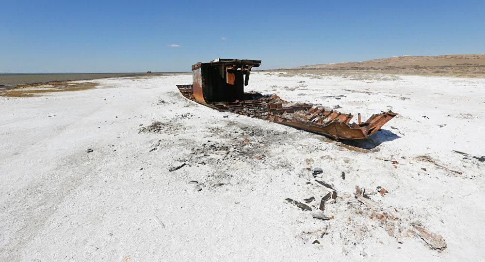 Новый Экологический кодекс планируют принять в Казахстане 2020 году