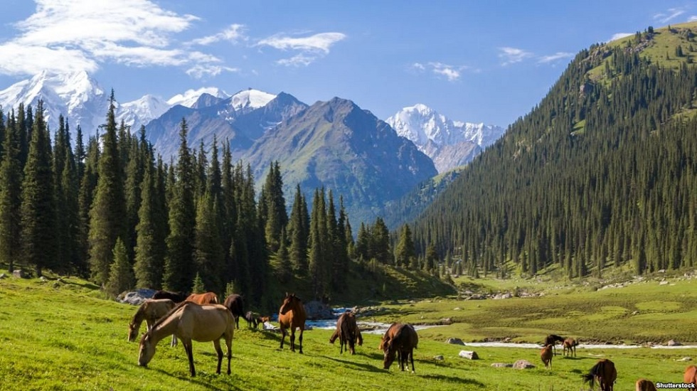 Сильный ветер и жара: погода в Казахстане на 20 июня