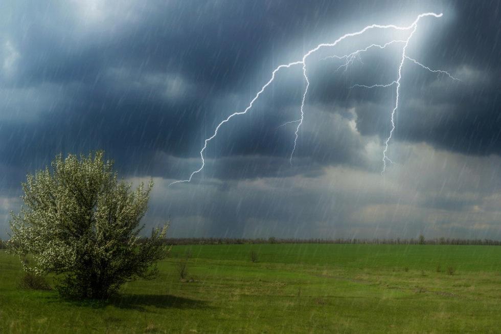 Дожди с грозами на севере, пыльные бури на юге: погода в Казахстане на 21 июня