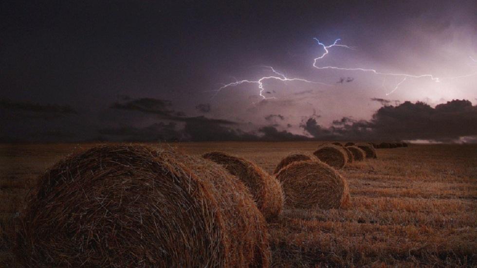Более 700 животных погибли от удара молнии в Монголии