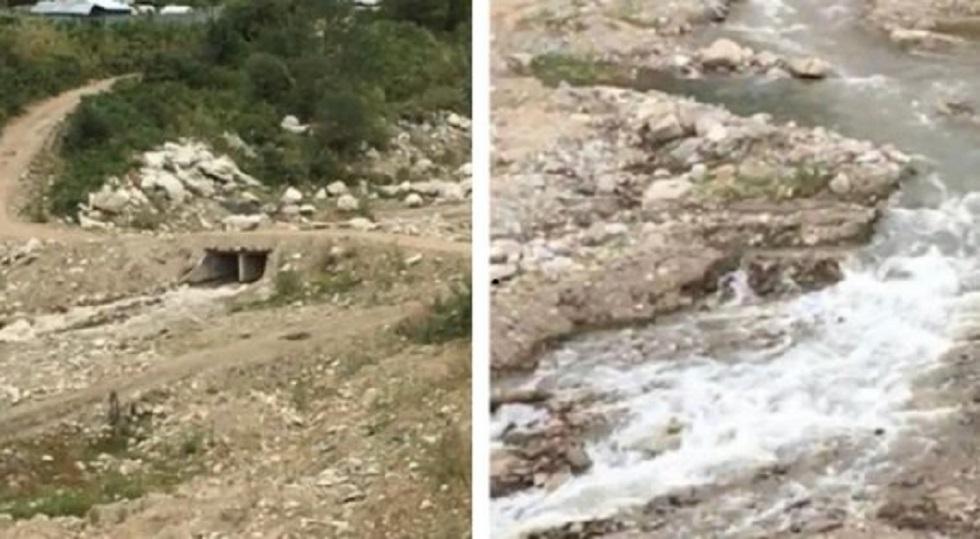 «Алаңдауға негіз жоқ»: Қарғалы өзенінің қазіргі ахуалы белгілі болды