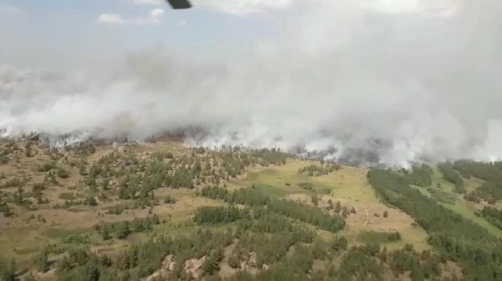 Пожар в национальном парке Карагандинской области: пламя пытаются потушить третьи сутки