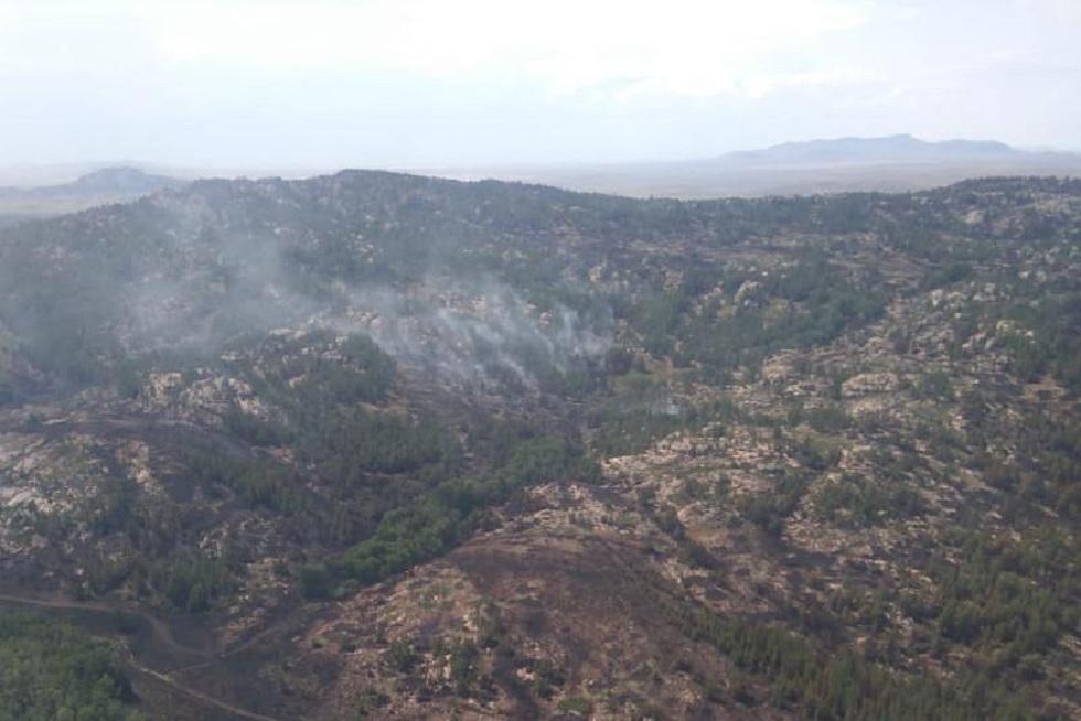 Пожар в нацпарке Карагандинской области локализован