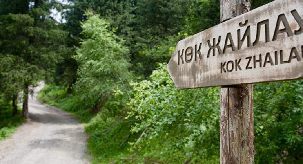 Курорт на Кок-Жайляу: Актоты Раимкулова дала пояснения