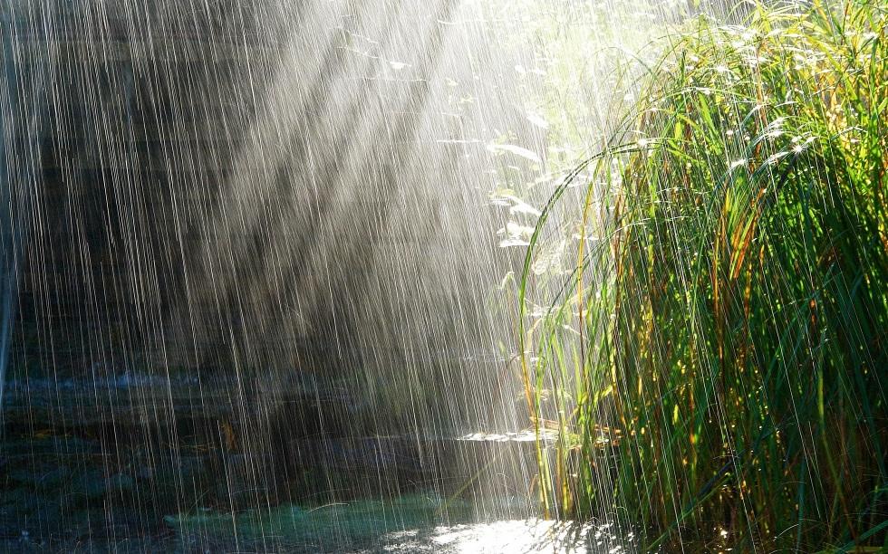 Сильная жара и дожди: погода на 22 августа в Казахстане
