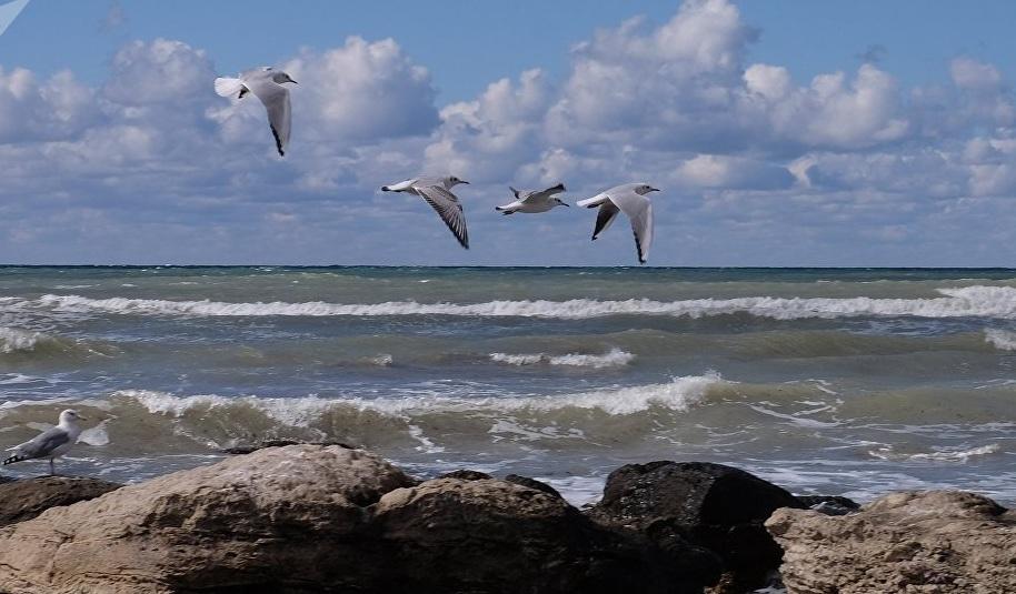 Каспий теңізіндегі туризм дамиды