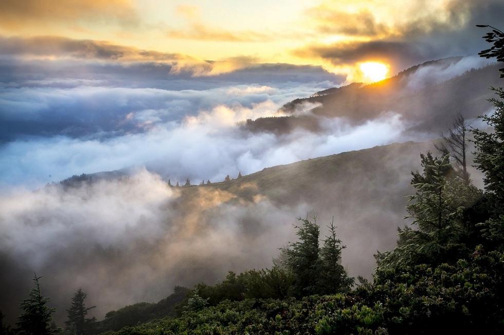 Погода в Казахстане: ожидаются ветер и туман