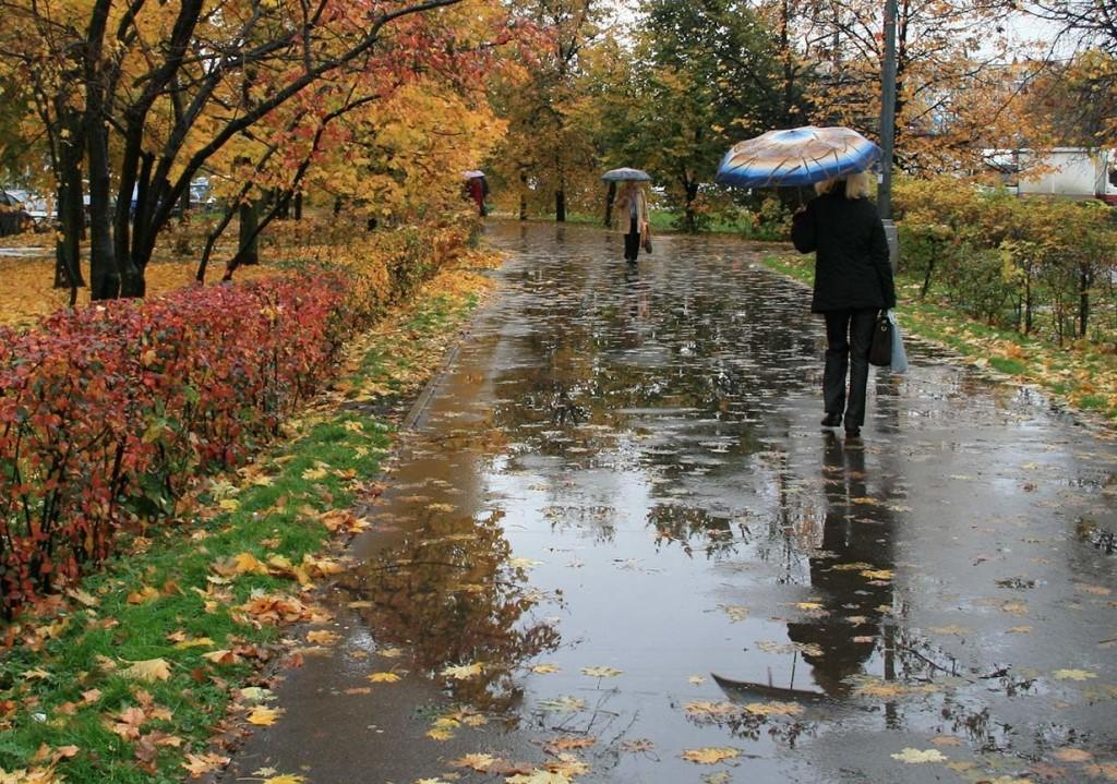 Дожди, грозы и туман: погода в Казахстане 10 сентября