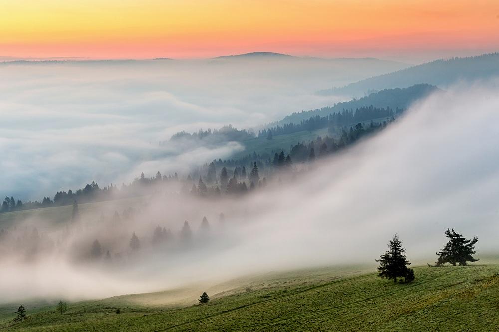 Туман на севере, пыльная буря на юге: погода в Казахстане 17 сентября