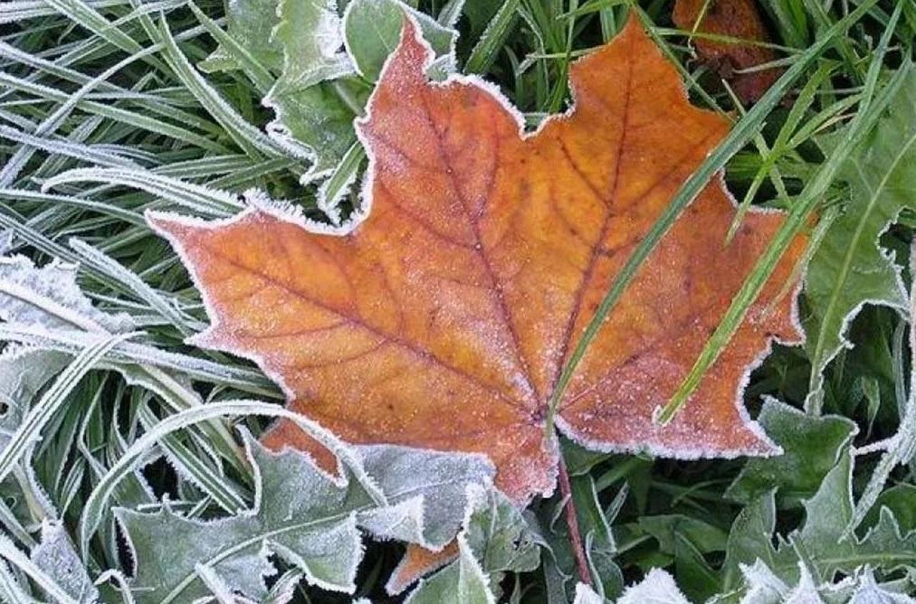 Ветер, туман и заморозки: погода в Казахстане 2 октября