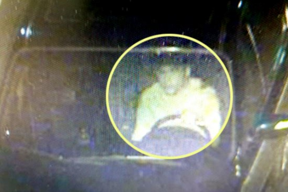 Найден сбивший на авто ребенка в Южной Корее казахстанец