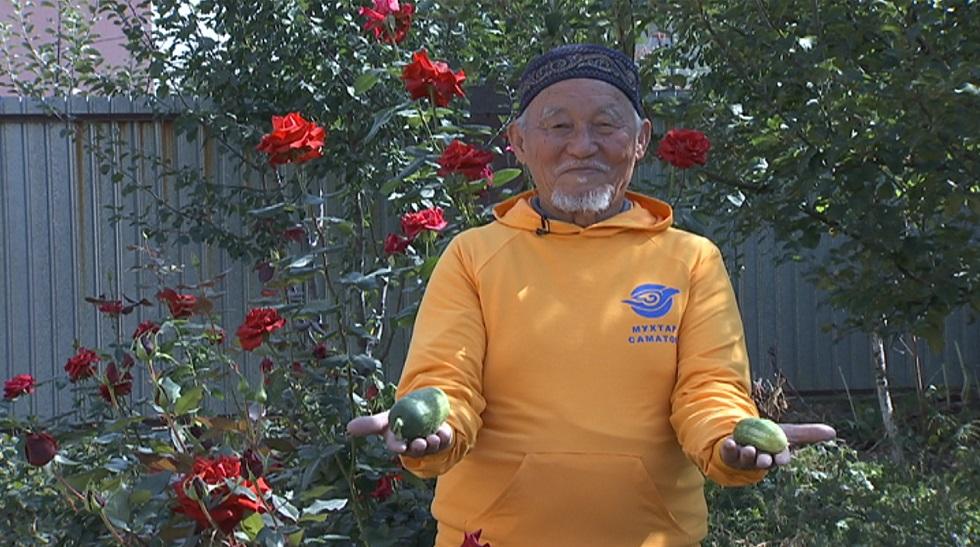 Алматы облысында 83 жастағы ақсақал бизнес бастамақшы