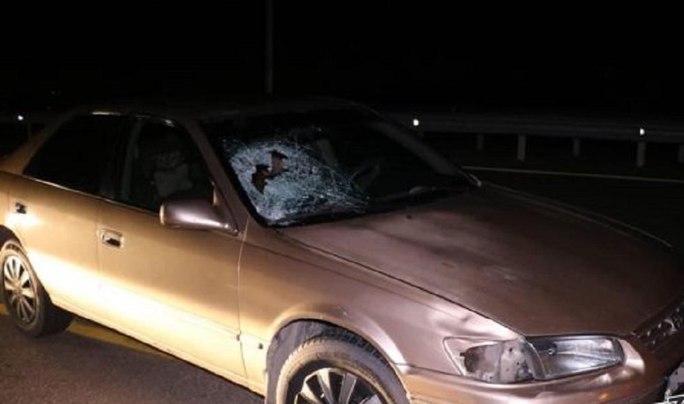 15-летнего подростка сбили на трассе близ Алматы (ФОТО)