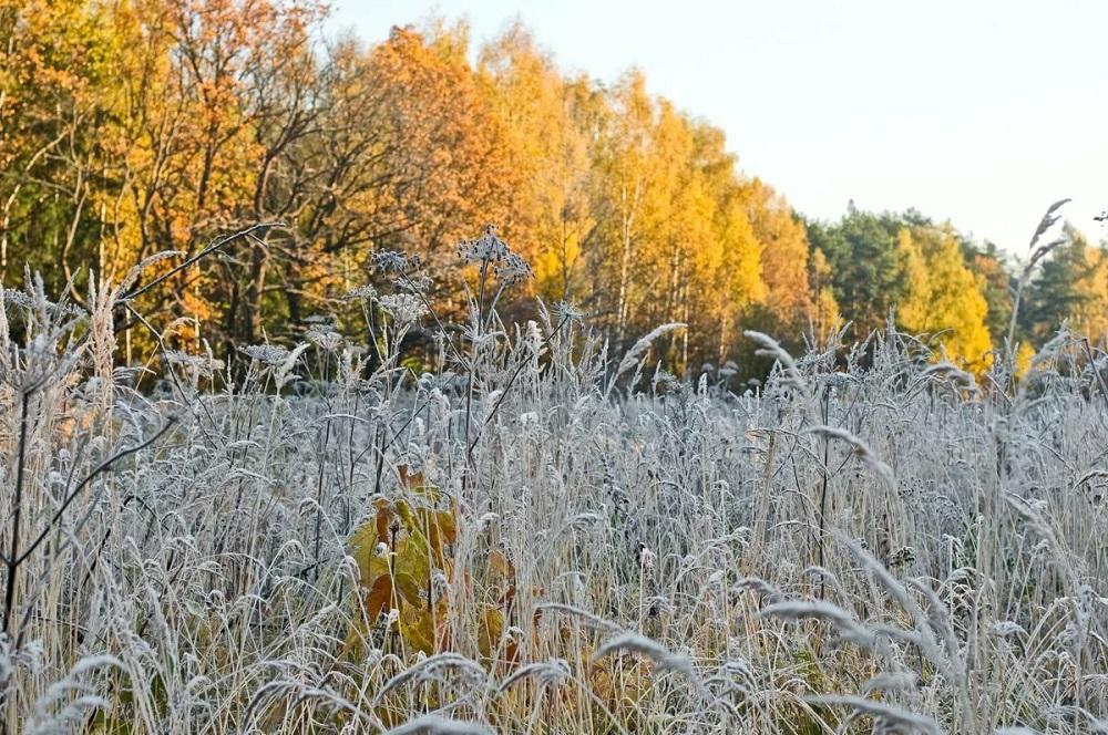 Заморозки на юге, гололед на севере: погода в Казахстане 22 октября
